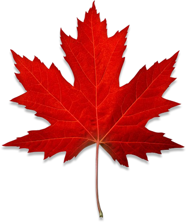 Immigration Law Firm Canadian Maple Leaf Image